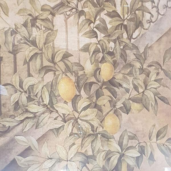 quadro albero di limoni